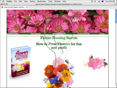 How to Press Flowers for fun and profit - The Secrets of Flower Pressing