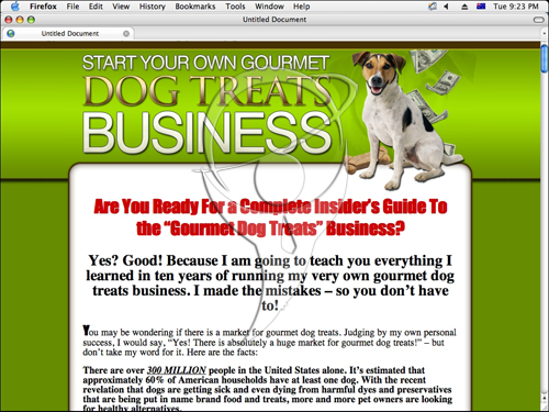 Start Your Own Gourmet Dog Treats Business